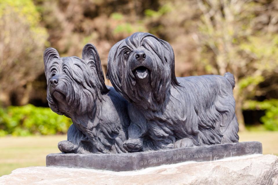 Skye Terriers Homecoming Statue